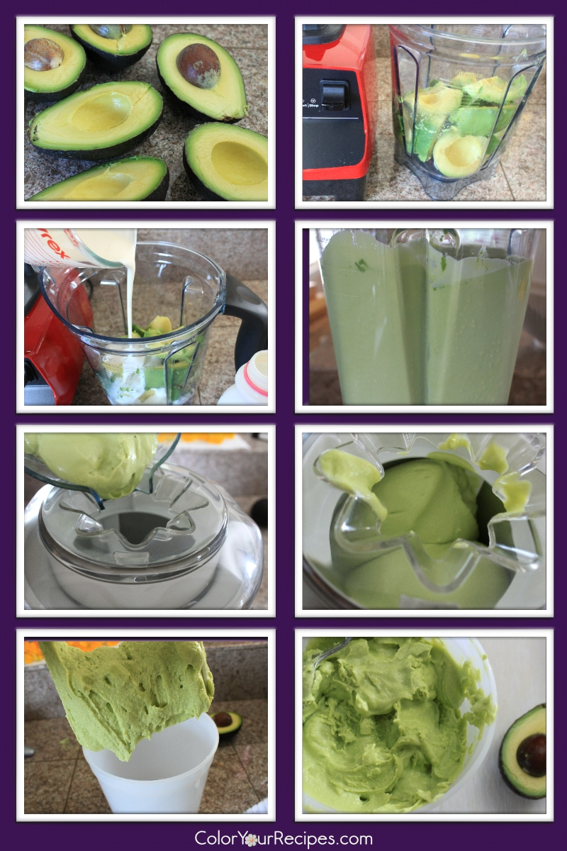 Simple Avocado Ice Cream Recipe (2) ~ Color Your Recipes